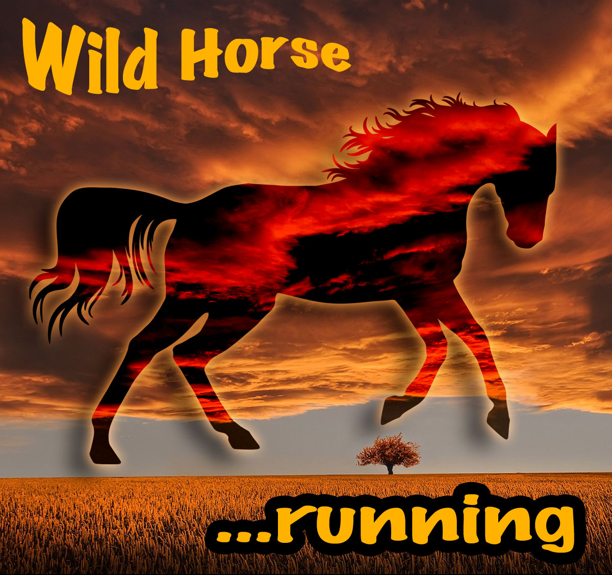 Wild Horse Running Free Music For Commercial Or Non Commercial Videos Synfiles Com